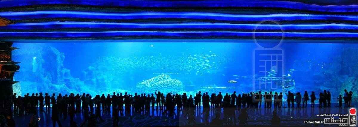 Chimelong Ocean Kingdom-aquarium3