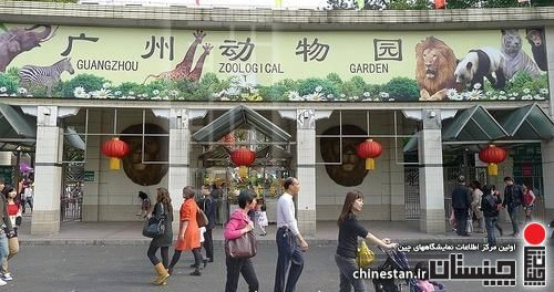 guangzhou-zoo1